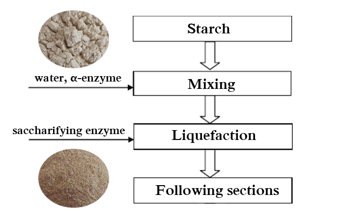 methods involved in production of glucose syrup from starch